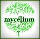 philippeolivierdepot_mycelium_-_logo.jpg